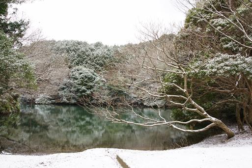 20110130_03.jpg